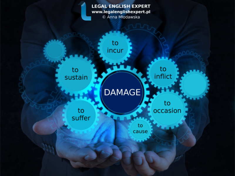 LEGAL ENGLISH EXPERT - infografika_25 - damage