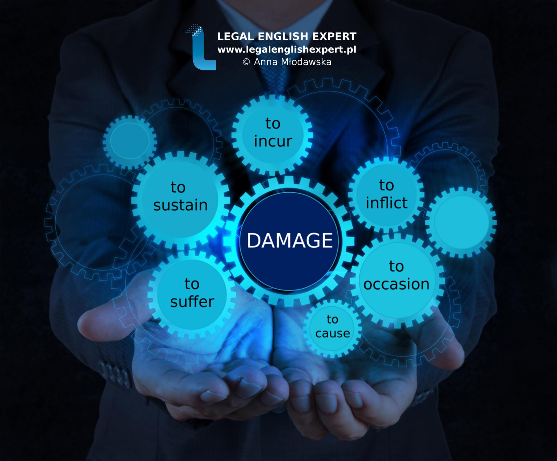 LEGAL ENGLISH EXPERT - infografika_25 - damage