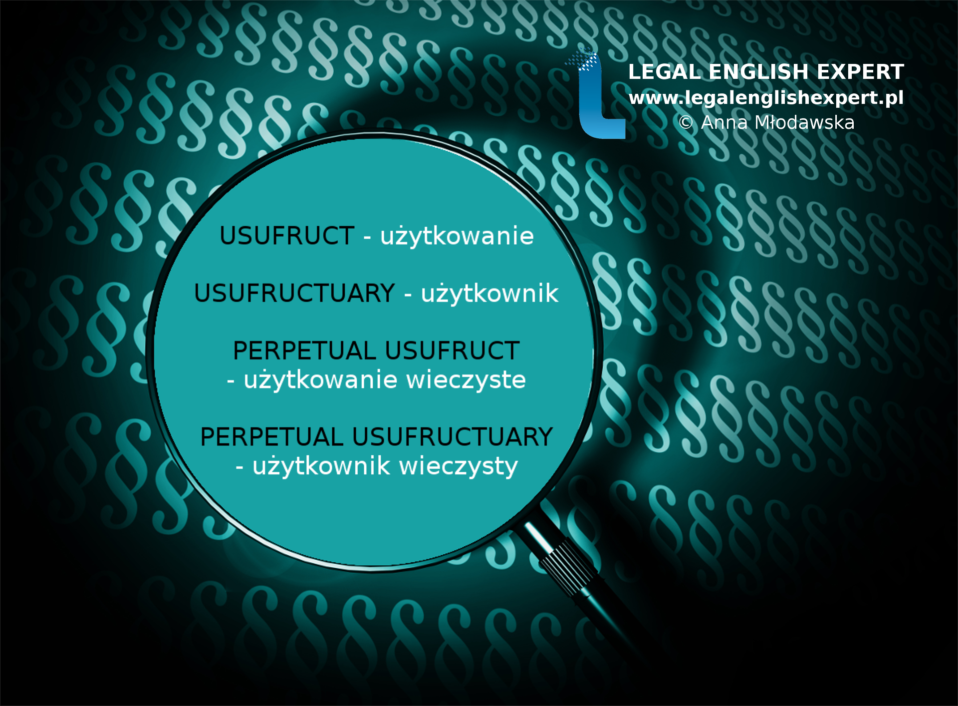 LEGAL ENGLISH EXPERT - infografika_41 - użytkowanie