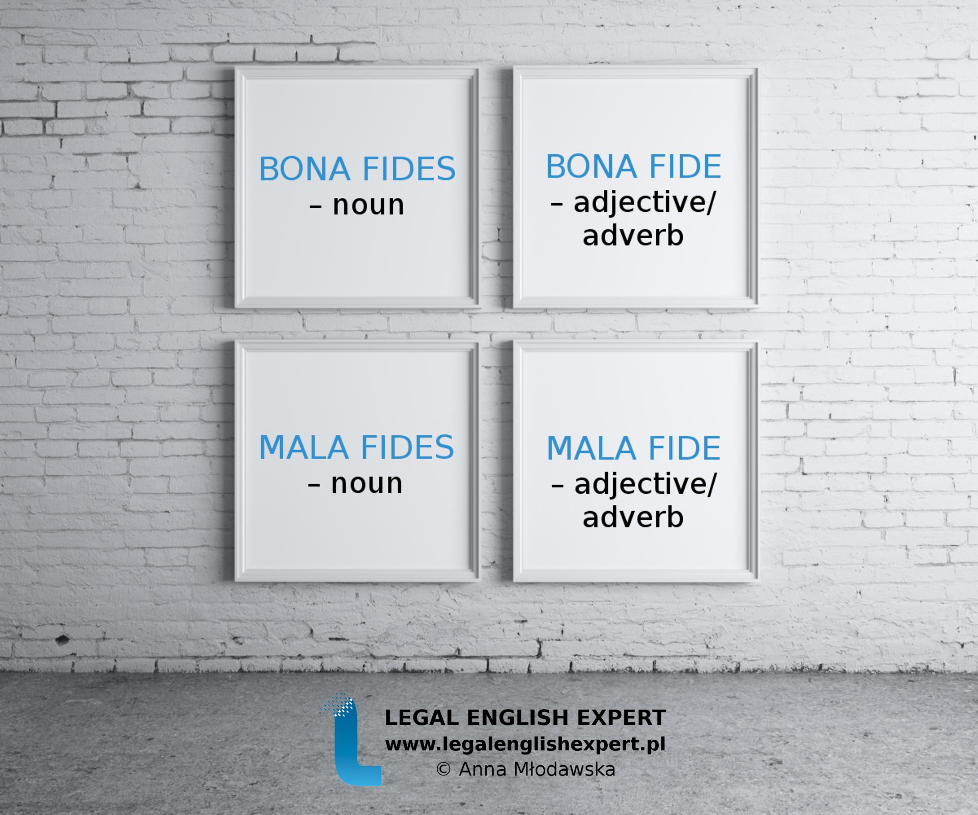 LEGAL ENGLISH EXPERT - infografika_60 - bona fides