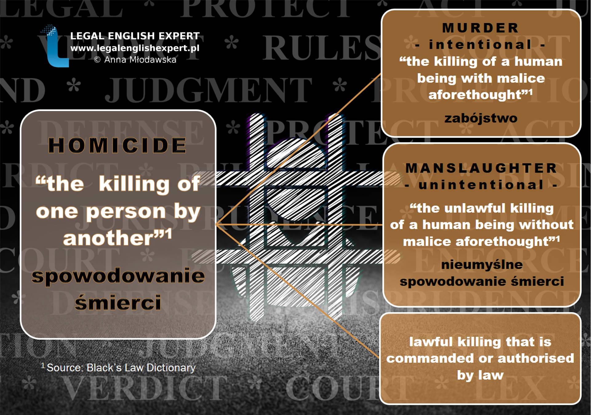 83 - homicide-final
