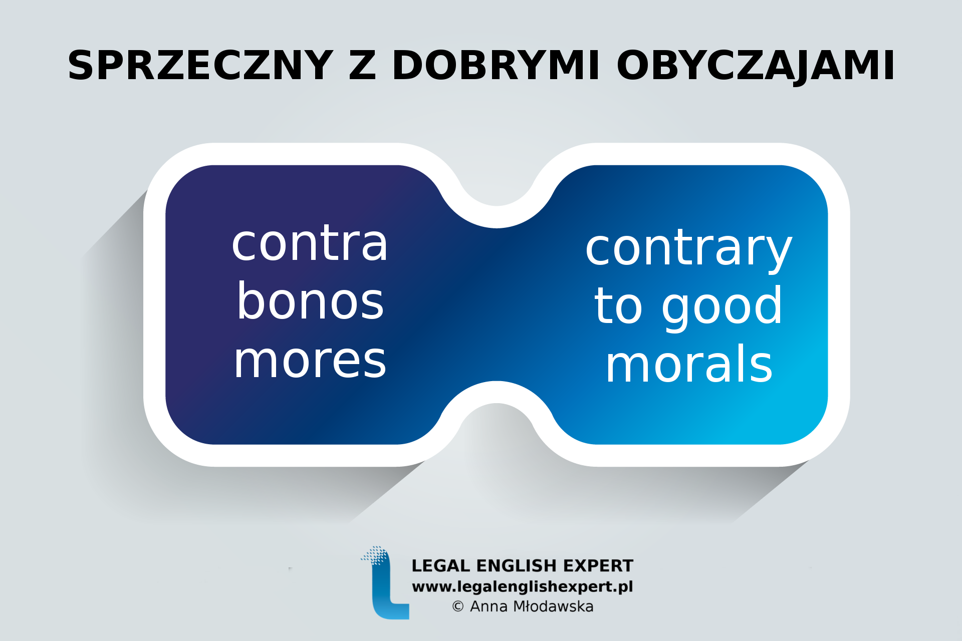 LEGAL-ENGLISH-EXPERT-grafika-71-SPRZECZNY-Z-DOBRYMI-OBYCZAJAMI